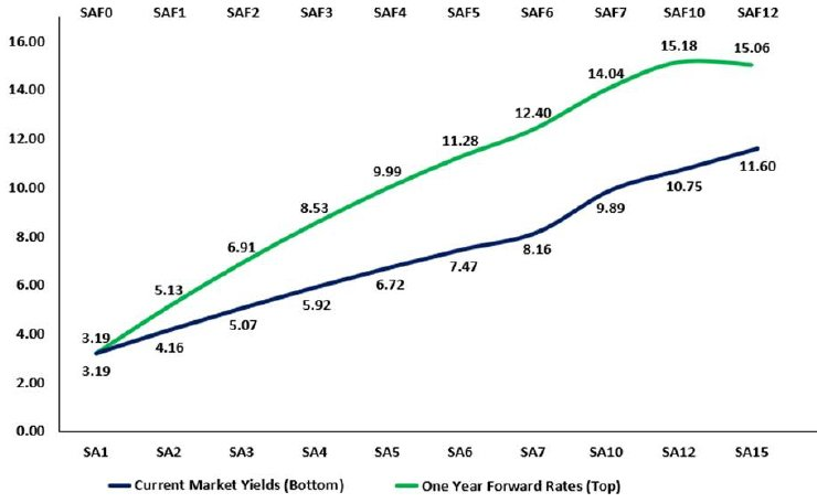 The RSA yield curve and the implicit one-year forward rates  graph